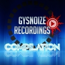 Gysnoize Recordings Compilation/Dj IGorFrost & Dmitry Bereza & Neonroom & Invisible Dye project & James Miller & Dj AltaiR & Paul Chasa & J-VINCE & Kill Boy