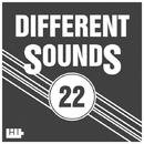 Different Sounds, Vol.22/Schneider Electric & Maker & Joe Black & Meat Stick & Dajte Grammy & Arny & Eugene Keim & DJ Egor Twist & Road Sign Project & Botar & Skyfolder