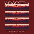 Breathing The Night/Groofeo