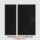 Spase Shuttle Dreams/Pasechnik