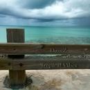 Tropical Vibes - Single/DaveZ