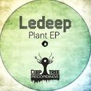 Plant EP/LeDeep