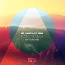 PANorama/Mr Rayah & Dr.Funk