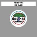Module/Neutron