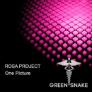 One Picture/Rosa Project
