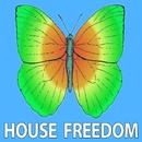 Save the House/Big Bunny
