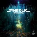 Transcendence/Symbolic