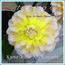 アイネクライネ(orig. Kenshi Yonezu) music box/Kyoto Music Box Ensemble