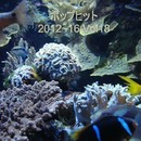 ポップヒット2012~16 VOL18/スターライト・オーケストラ&シンガーズ