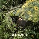 Colors/The Elephants