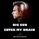 Enter My Brain/Big Gun