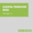 Essential Progressive Music, Vol. 14/AnLight/Andrey Subbotin/Quantum Duxe/Grim Silence/Alex Tasty/Mart Lavoie/BiOt3Ch/DJ Pamen/DJ Volya/Xiary Quey/Zero Movement/Likhnitsky