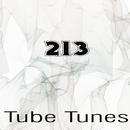 Tube Tunes, Vol.213/Eze Gonzalez/from Siberia/Death Plays/Stereo Sport/Cristian Agrillo/Raimon/Dj Tommy One/LifeStream/Lank/Nic Bax/Sean McClellan/Vinayak A