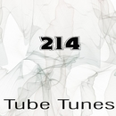 Tube Tunes, Vol.214/Bad Surfer/NIR 300/Alex Greenhouse/Dj Tommy One/BOLDYART/Matt Braiton/Dmitriy Alfutov/GraySP/Flumer/Ovil