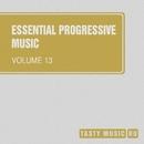 Essential Progressive Music, Vol. 13/Bob Decyno/Slapdash/Amnesia/Moving/Mart Lavoie/Onefold/Snork/Spellrise/Anton Sergeev/Xiary Quey/Murdbrain/Deny Wilde