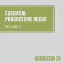 Essential Progressive Music, Vol. 5/Nick Cadillac/Matt Ether/Armor/ToFa/DJ F Sar/Alex van Deep/Sergey Shvets/Jagin/The Global Phase/Twinkle Sound