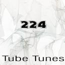 Tube Tunes, Vol.224/Anton Seim/D.Matveev/Andrey Subbotin/Andrejs Jumkins/DJ Vantigo/Askari/DJ Volya/John Bonker/Cream Sound/Green Ketchup/Cos Tique/SoundLake