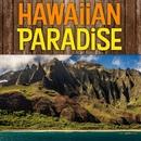 Hawaiian Paradise/Wout Steenhuis & The Kontikis