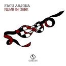 Numb in Dark/Facu Arjona