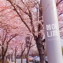 It's Spring/East Corner