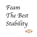 Feam The Best Stability/Feam