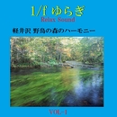 1/f ゆらぎ Relax Sound 軽井沢野鳥の森のハーモニー VOL-1/リラックスサウンドプロジェクト