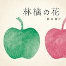 林檎の花/槇原敬之