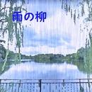 雨の柳 feat.Chika/澤山 晋太郎