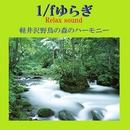 1/f ゆらぎ Relax Sound 軽井沢野鳥の森のハーモニー VOL-2/リラックスサウンドプロジェクト