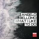 What I Like To Do/Angelo Bellomo