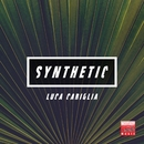Synthetic/Luca Cariglia