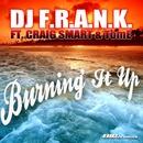 Burning It Up [feat. Craig Smart & Tom E]/DJ F.R.A.N.K