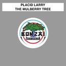 The Mulberry Tree/Placid Larry