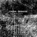 Vibrant/Lasha Qebadze