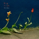 Big fish/王舟