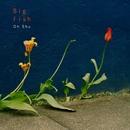 Big fish (PCM 48kHz/24bit)/王舟