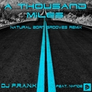 A Thousand Miles (Natural Born Grooves Remix) [feat. Nynde]/DJ F.R.A.N.K