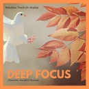 Deep Focus - Melodious Tracks For Healing, Relaxation, Peaceful & Harmony/Pure White Aura Record & Subliminal Healing Vibes Production & Divine Buddha & Co & Supernal Quietism Project