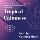 Tropical Calmness (Music For Meditation, Calmness, Relaxation, Deep Breathing, Dhyana, Spiritual Achievement) (New Age Calming Music)/Pure White Aura Record & Subliminal Healing Vibes Production & Divine Buddha & Co & Supernal Quietism Project