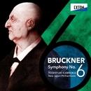 ブルックナー:交響曲 第 6番/新日本フィルハーモニー交響楽団