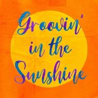 Groovin' in the Sunshine feat. BASI & 向井太一