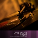 Little Walter Hitbox/Little Walter