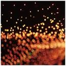 Fireflies/Marcus D