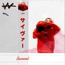 ( ・ω・) -Aschii Art-/VaVa