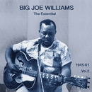 The Essential Big Joe Williams 1945-1961 Vol.2/Big Joe Williams