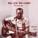 The Essential Big Joe Williams 1945-1961 Vol.1/Big Joe Williams