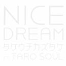 NICE DREAM feat. TARO SOUL/タケウチカズタケ
