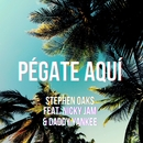 Pegate Aqui (feat. Nicky Jam & Daddy Yankee)/Stephen Oaks