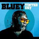 Tinted Sky/BLUEY