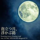 泡立つ月、浮かぶ路 feat.GUMI/Sad Juno